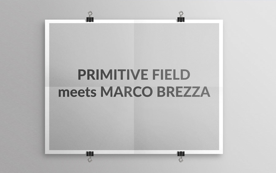PRIMITIVE FIELD meets MARCO BREZZA